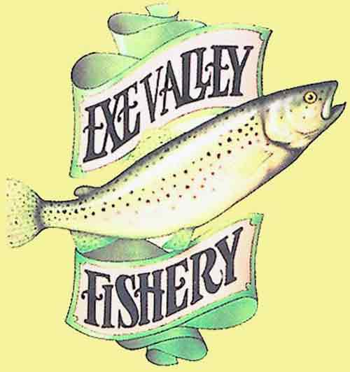 Exe Valley Fishery Shop